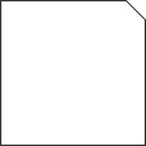 50,5×50,5 . 20″x20″ Lapp. Rettificato