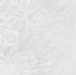 Roses White   60x60 . 24